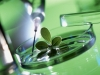 Российским аграриям предложат профинансировать научные открытия и 148 селекционных центров