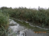 Рациональное использование водных ресурсов становится приоритетным