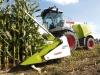В Москве создадут бюджетное ведомство, которое будет заниматься закупкой излишков продукции у областных фермеров или совхозов