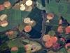 сельхозугодья из космоса, вид из космоса поля, сельское хозяйство из космоса