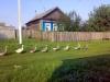 На сельские клубы потратят до 3 миллионов рублей