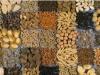 Сельхозпроизводитель,будь внимателен при покупке семян