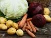 В чём особенности развития донских овощеводческих кооперативов?