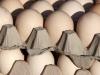 Цены на яйцо