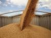 взрыв зерновой пыли на донском предприятии