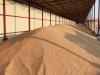 Закупочные цены на пшеницу и ячмень на 09.12.2014 года